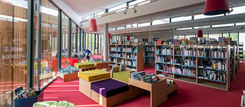 Réseau des bibliotheques Sèvre & Loire